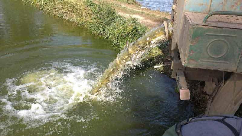 Зарыбление нагульного пруда