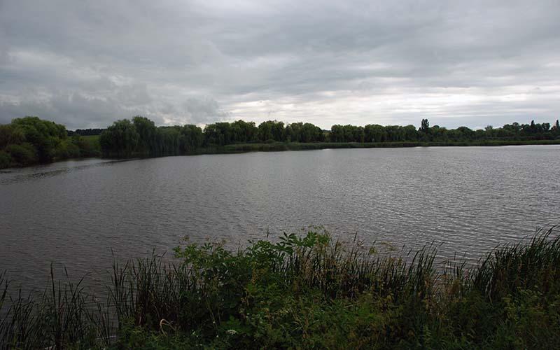 Рыбоводный пруд где применялся Риверм для аквакультуры